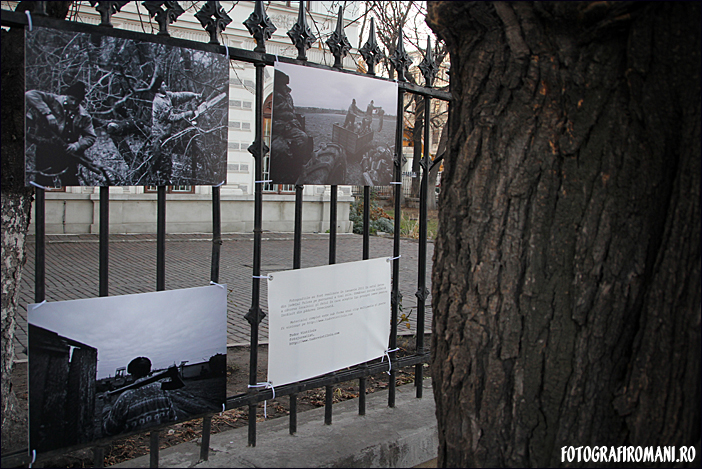 Cuvant inainte - Expozitia fotojurnalistilor 2011 - Ovidiu Micsik - Tudor Vintiloiu - Padurea Letea - fotografiromani_ro
